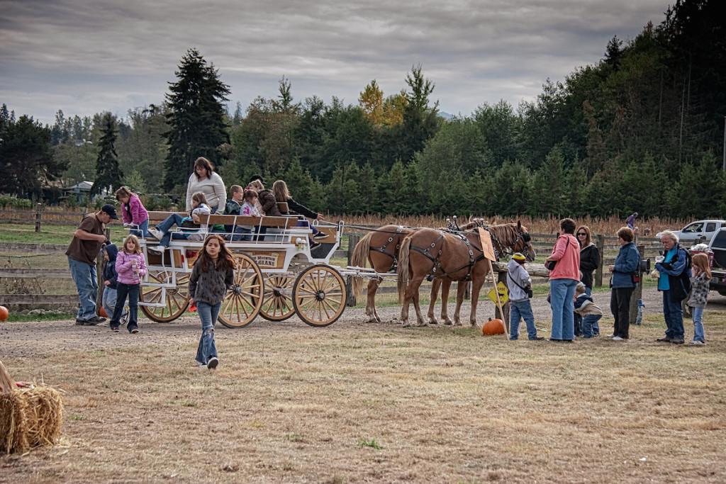 Farm Tour Hay Rides